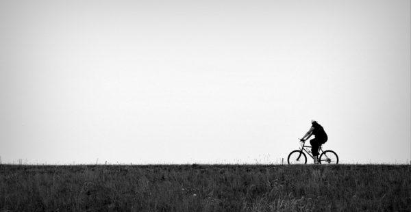 Mobiliteitsbeleid en de vrije wil