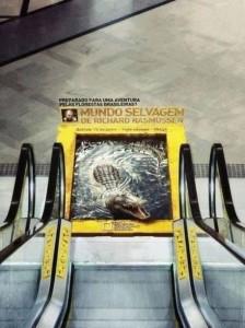Croc escalator