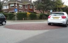 Punaises op het kruispunt