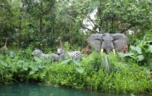 Verkeer als jungle
