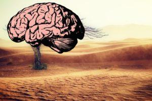 Duurzaam gedrag; de ultieme strijd met onze instincten