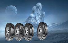 Koning winter en autobanden