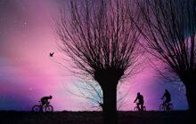 Over de nieuwe werkelijkheid op het fietspad